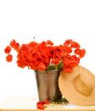 wiadro kwitnie kapeluszową kruszcową makową czerwoną słomę Zdjęcie Stock