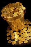 wiadro pieniądze Zdjęcie Royalty Free
