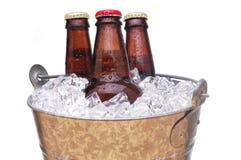 wiadro piwa Obrazy Stock