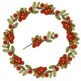 Wianek liście i jagody cranberries obrazy royalty free