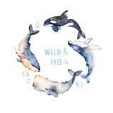 Wianek na białym tle z błękitnym wielorybem, żebro wielorybem i sperma wielorybem, ilustracja wektor