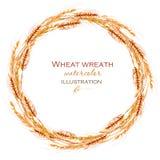 Wianek, okrąg ramy granica z pszenicznymi spikelets Zdjęcia Royalty Free