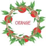 Wianek pomarańcze Fotografia Royalty Free