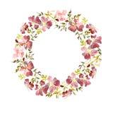 Wianek robić delikatni czerwień kwiaty i liście zieleni i koloru żółtego Brier gałązka na białym tle okrągły kształt adobe korekc ilustracja wektor
