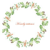 Wianek rowan, dębów liście i acorn, Fotografia Royalty Free