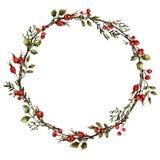 Wianek z różanymi biodrami royalty ilustracja
