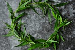 Wianek z zieleni ramą na szarym tle Gałąź wierzby i zieleni liście Szara ponuractwo cementu podłoga zdjęcie stock