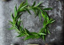 Wianek z zieleni ramą na szarym tle Gałąź wierzby i zieleni liście Szara ponuractwo cementu podłoga obrazy stock