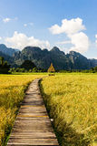 Pathway to the mountains At Wiang Thara blue is blue. Stock Photo