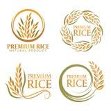 Wianku irlandczyka premii naturalnego produktu sztandaru ryżowego znaka wektorowy projekt Obraz Royalty Free