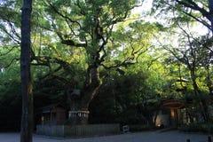 Wiara w Japan obrazy royalty free