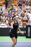 Świat Żadny 6 gracz w tenisa Ana Ivanovic Zdjęcie Royalty Free