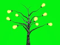 światła żarówki drzewo. Obrazy Royalty Free