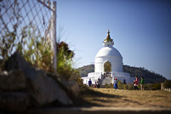 Światowego pokoju pagoda Zdjęcie Stock