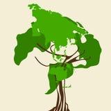 Światowej mapy drzewo Fotografia Royalty Free