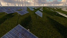 Wiatr i słoneczny gospodarstwo rolne przy popołudniem zbiory wideo