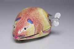 Wiatr mysz Obraz Royalty Free