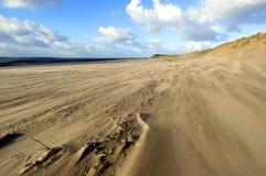 wiatr na plaży obraz stock
