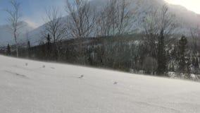 Wiatr podnosi snowdrift iskrzastych płatek śniegu nad śnieżna pokrywa zbiory wideo