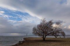 Wiatr przy jeziorem obraz stock