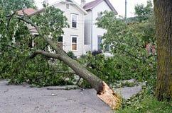 wiatr uszkodzeń Zdjęcia Royalty Free