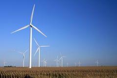 wiatr z gospodarstw rolnych Obrazy Stock
