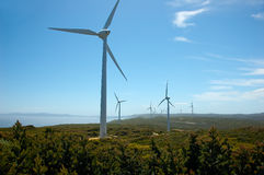 wiatr z gospodarstw rolnych Obrazy Royalty Free