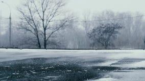 Wiatr zamiata śnieg wzdłuż osamotnionej drogi zbiory