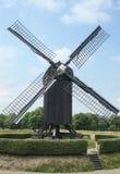 wiatraczek Obrazy Stock