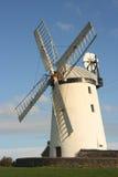 wiatraczek Zdjęcie Royalty Free