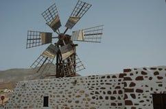 Wiatraczek w Fuerteventura (Spain) Obraz Royalty Free