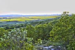 Wiatraczków poly ziemia Fotografia Stock