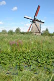 Wiatraczki Kinderdijk 5 Obraz Stock