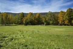 Wiatraczki na wysokiej grani przeciw niebieskiemu niebu, Maine Zdjęcia Royalty Free