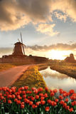 Wiatraczki w Holandia z kanałem Zdjęcie Stock