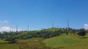 Wiatraczki, zielona trawa i niebieskie niebo, obraz stock