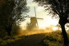 wiatrak mgła. zdjęcie royalty free