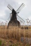 Wiatrowa pompa w krajobrazie z trzcinowymi łóżkami przy Wicken Fen, Cambridgeshire, Anglia Fotografia Stock