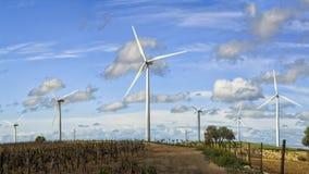 Wiatrowe elektryczności pokolenia pola chmury Zdjęcia Stock