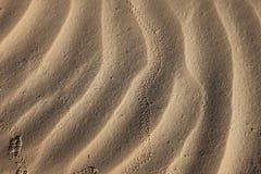 Wiatrowe tekstury na piasku Obrazy Royalty Free