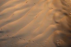 Wiatrowe tekstury na piasku Zdjęcie Royalty Free