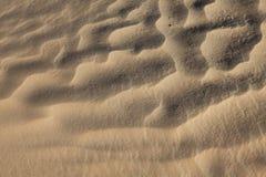 Wiatrowe tekstury na piasku w Sahara Obrazy Stock