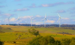 Wiatrowego gospodarstwa rolnego turbina na niebieskiego nieba tle Żółty jesieni pole Gospodarstwo rolne, koń, krowy obraz stock