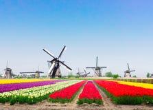 Wiatrowi Holenderów młyny Fotografia Stock