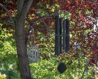 Wiatrowi kuranty wiesza od drzewa na kolorowym dniu obraz royalty free