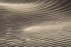 Wiatrowy dmuchanie nad piasek diunami Fotografia Stock