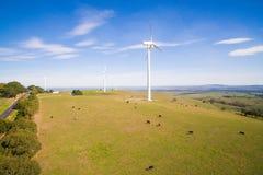 Wiatrowy gospodarstwo rolne w Australia zdjęcie stock