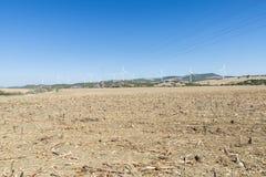 Wiatrowy gospodarstwo rolne w Hiszpania Obraz Royalty Free