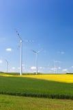 Wiatrowy gospodarstwo rolne z przędzalnianymi silnikami wiatrowymi Obrazy Stock