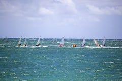 Wiatrowy surfing zdjęcie stock